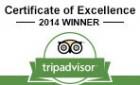 Trip Adviser Award