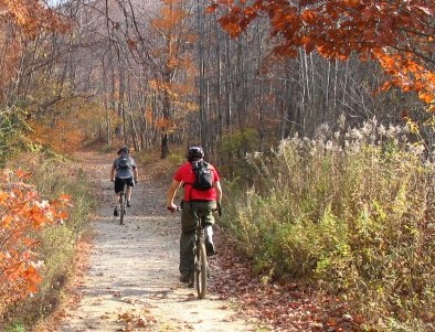 Fall_Biking_Cape_Cod_251628