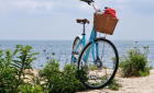 6 Best Restaurants Near the Cape Cod Rail Trail
