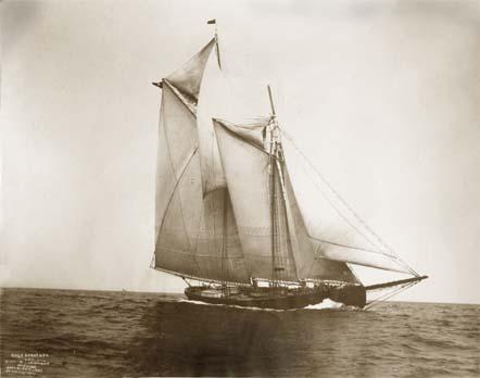 Rose Dorothea schooner