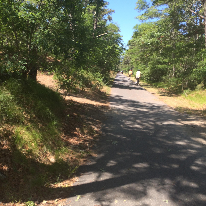 Bike path at Nickerson
