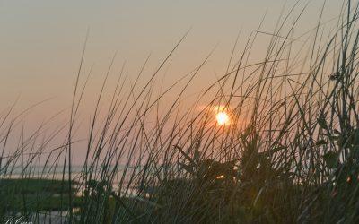 BeachSunset-20080707-101