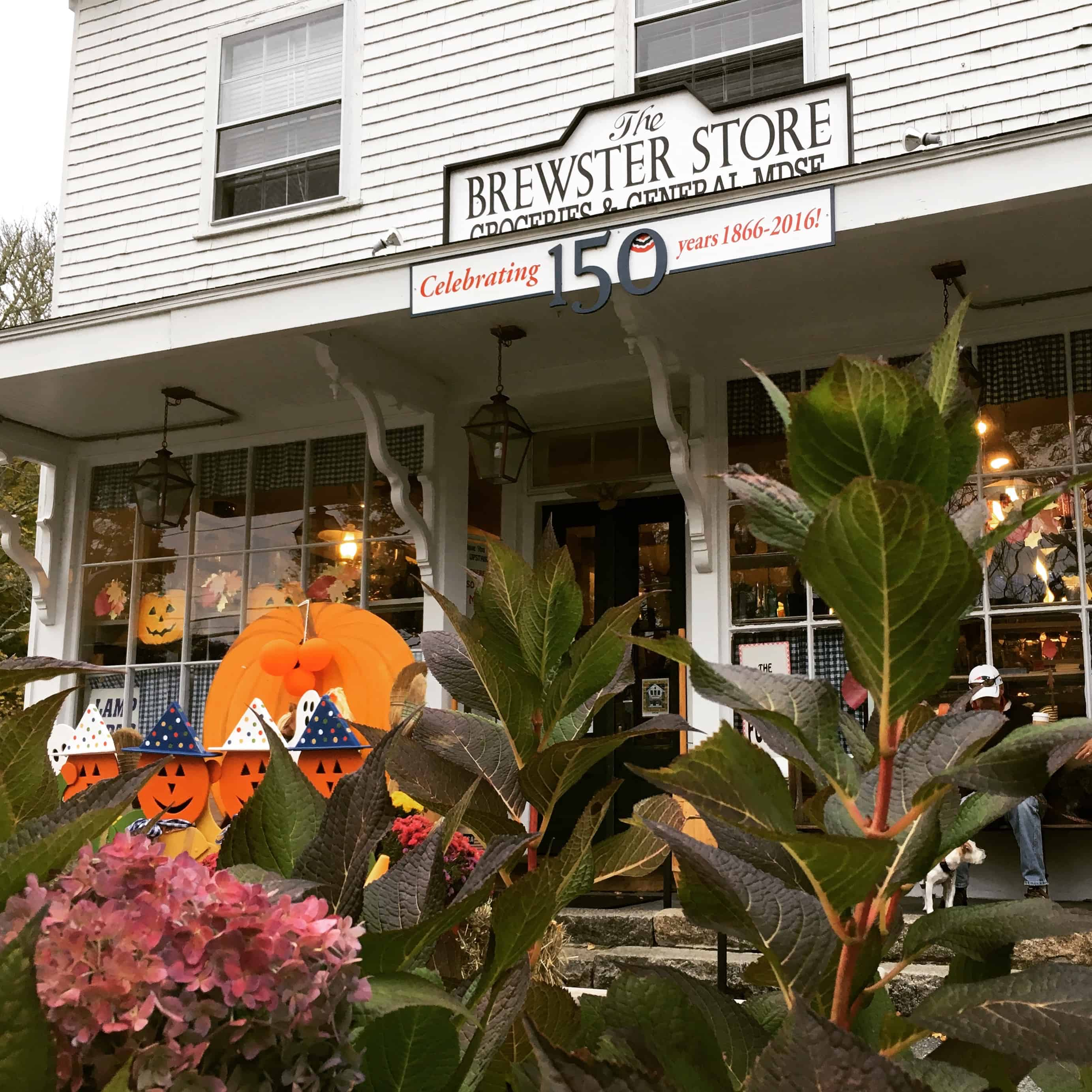 everything you need to know about brewster | captain freeman inn