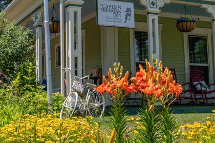Summer gardens at the inn