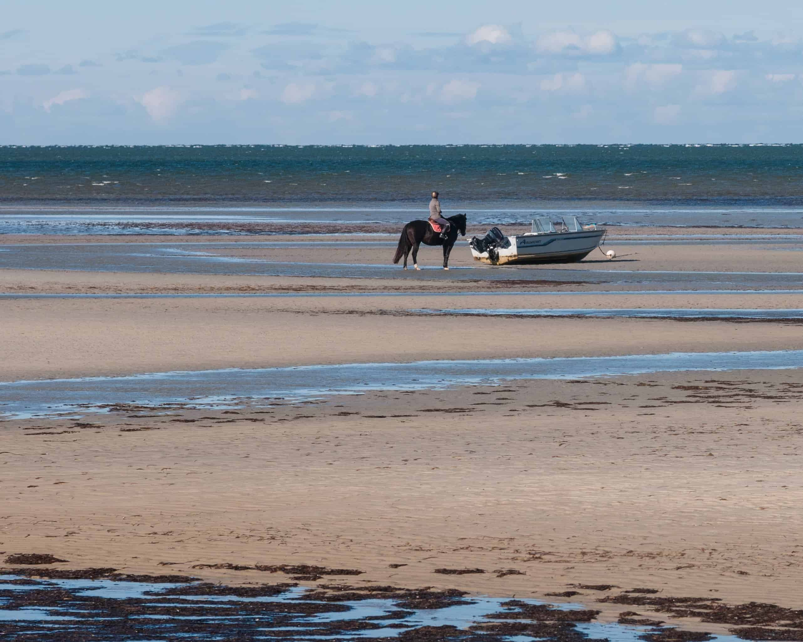 a boat and a horse at low tide