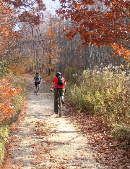 Biking on the Cape Cod Rail Trail