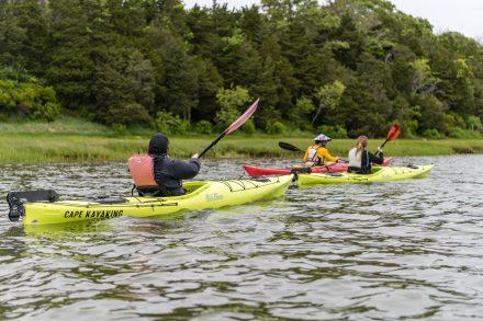 Kayaking on Nauset Marsh