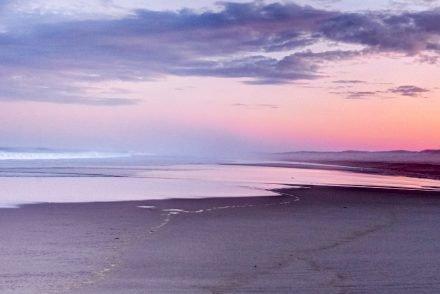 Pink and violet hues at Nauset Beach at sunrise