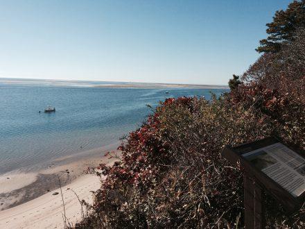 Beach at Monomoy Wildlife Preserve