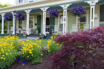 Front porch at the Freeman with beautiful yellow flowers