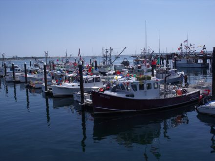 Fishing Boats in Provincetown Harbor