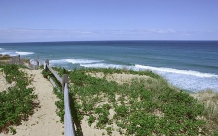 Observation deck with split rail fence at Marconi Beach